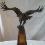 DP Eagle